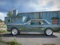 Mustang_an_der_alten_Halle_002