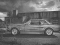 Mustang_an_der_alten_Halle_002_sw