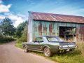 Mustang_vor_der_Scheune